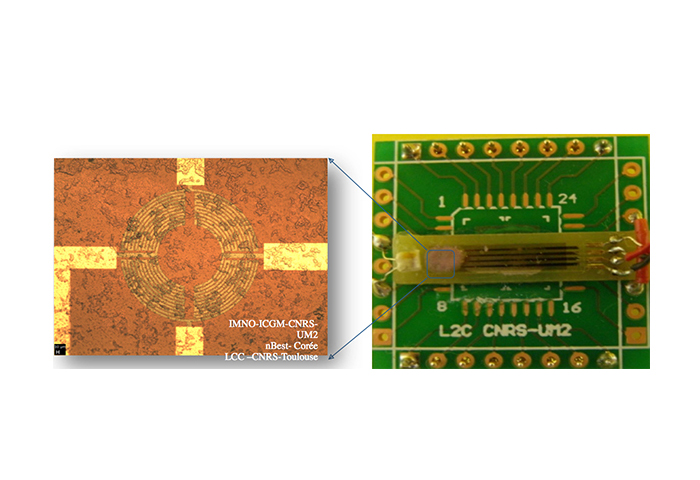 electronic-gas-sensor